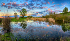 "Τo «ύδωρ το ζών»                                                  The ""living water"" panorama (Dimitil) Tags: nomi trikala thessaly greece hellas land water landscape waterscape reflections clouds sky colors plants trees nature sunset pano panorama"