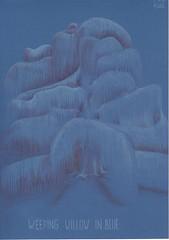 Weeping willow in blue. (Klaas van den Burg) Tags: lightblue blackberryblue weepingwillow