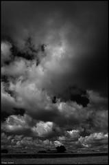 Peray (Sarthe) (gondardphilippe) Tags: peray sarthe maine paysdelaloire noiretblanc noir nb blanc blackandwhite bw black white nuages clouds campagne ciel champ extérieur field graphique landscape monochrome nature ferme farm outdoor ombre old paysage quiet rural sky texture ruralité vieux zen