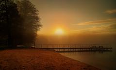 End of the day. (augustynbatko) Tags: sunset lake autumn nature water pier trees sun beach sand mist sky tree landscape grass