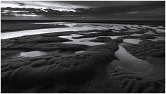 Maasvlakte after sunset (Rob Schop) Tags: bw zwartwit seascape maasvlakte sea beach lowtide patterns texture sonya6000 wideangle samyang12mmf20 f11 pola hoyaprofilters slufter