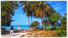 [Varadero] 22K of beach (plismo) Tags: varadero matanzas cuba palm tree beach water sea sky sand oacean sonye2306 xperia ocean caribbean palmtree plismo