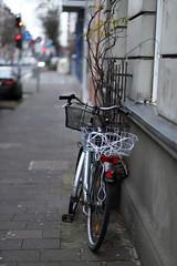 bokeh 3@Bilk, Düsseldorf (Amselchen) Tags: bike bicycle bokeh blur dof depthoffield canon ef85mmf18usm canoneos6dmarkii