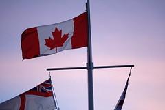 (Emma Paddle) Tags: canada canadian flag canadaflag canadianflag sunset purple redandwhite mapleleaf