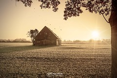 mystic autumn morning (Light and shade by Monika) Tags: light autumn münsterland sunrise landschaft landscape nature