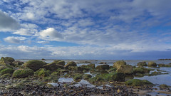 Boltenhagen 02112018 0553 (Dirk Buse) Tags: inselpoel mecklenburgvorpommern deutschland deu germany baltic sea ostsee horizon horizont blau himmel blue sky wolken cloud relax travel reise mft mu43 m43 olympus