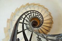 Vértigo (jantoniojess) Tags: spiral spiralstaircase espiral escaleras escalones escaleradecaracol escalerahelicoidal hungría budapest catedralbasílicadesanestebanbudapest szentistvánbazilika nikond5200 perspectiva perspective architecture arquitectura