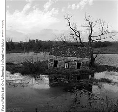 Found While Lost On A Shortcut In Rural Manitoba (jwvraets) Tags: manitoba field flooded underwater cabin derelict clouds film monochrome blackandwhite kodak tmax100 tmx6052 mediumformat 120filmsize rollfilm twinlensreflex minoltaautocordcds viewscan