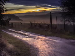 Cometh The Dawn (Durham George) Tags: sun rise sunrise clouds sky grass reflections