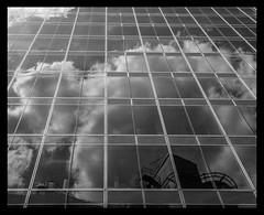 London buildings (spencerrushton) Tags: spencerrushton spencer sun summer rushton 1635mm canonlens canon canonl canon1635mmf4usmisl london londonuk londoncity light city cityoflondon circularpolariser building abstract architecture art londonphotowalk londonstreet street sky clouds beautiful blackandwhite black bw white monochrome