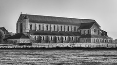 L'Abbaye de Pontigny (Ivan van Nek) Tags: pontigny yonne france abbayedepontigny frankrijk frankreich nikon nikond7200 d7200 blackandwhite schwarzweis noiretblanc nb bw monochrome abdij abbey ruepauldesjardins derailinator architecture architektur architectuur