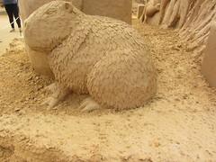Capybara,   A Day at the Zoo, Frankston Sand Sculptures, 2016 (d.kevan) Tags: sandsculptures frankston victoria adayatthezoo 2016 capybara southamerica