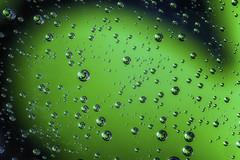 A Little Bit o Green (superdavebrem77) Tags:
