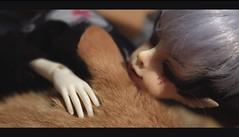 Shh, sleepy cat... (Caramello_Cat) Tags: bjd msd dollfie dollchateau jason