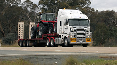 Hume & Machinery (2/2) (Jungle Jack Movements (ferroequinologist)) Tags: freightliner argosy kenworth transport yass haulage bowning nsw new wales australia hume highway freeway hp horsepower big rig haul freight cabover trucker drive carry delivery bulk lorry hgv wagon road nose semi trailer deliver cargo interstate articulated vehicle load freighter ship move roll motor engine power teamster truck tractor prime mover diesel injected driver cab cabin loud rumble beast wheel double b peacock rochester t904 massey ferguson jcb low loader step deck