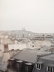 (Rebecca Skye Watson) Tags: paris parislove rooftops parisrooftops grey pale