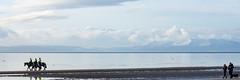 Arran view from Irvine Beach (RCB4J) Tags: ayrshire ayrshirecoast babygrace clydecoast firthofclyde irvinebeach jakob rcb4j ronniebarron scotland siameselurcher sony18250mmf3563dtaf sonyslta77v trailhound art bordercollie dobermanterrier dogs labradors photography retrievers shoragundogs spaniels isleofarran arran