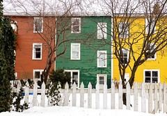 Neighbours (Karen_Chappell) Tags: three house home houses green yellow white fence snow downtown nfld stjohns jellybeanrow newfoundland canada atlanticcanada avalonpeninsula eastcoast city trees red windows architecture building rowhouse homes winter colourful colours colour color
