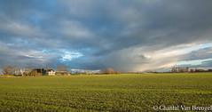 Middag Humsterland (Chantal van Breugel) Tags: landschap cursuslandschapsfotografie middaghumsterland groningen nederland februari 2019 canon5dmark111 canon24105