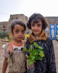 Village Girls (Rod Waddington) Tags: middle east yemen yemeni village girls culture cultural children child houses buildings architecture traditional haraz mountains vase plant sisters outdoor portrait streetphotography