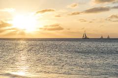 Sun and Boat (mystero233) Tags: sun sunset dusk boat ship catamaran sea beach water reflection light yellow clouds sky aruba caribbean island onehappyisland outdoor landscape travel holiday