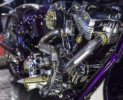 "Tribute_MotoMadrid_084 (byJMdF) Tags: artesanía cordobesa custom bikes motorcycle moto motocicleta ""craftwork cordobese"" craftwork artesania salón motomadrid 2019 salónmotomadrid2019 harley davidson softail 1340 1995 harleydavidsonsoftail1340 harleydavidsonsoftail13401995 hdsoftail13401995 hd motomadrid2019"