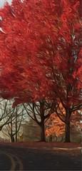 Fall maple trees (edited) (mohuski) Tags: natureplus oilpaintingeffect fallcolors maples trees o trabajo excelñente