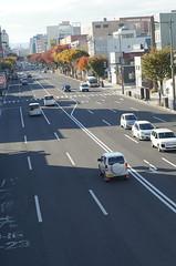 An autumn street (しまむー) Tags: sony slta57 a57 α57 minolta af 50mm f17 autumn walk