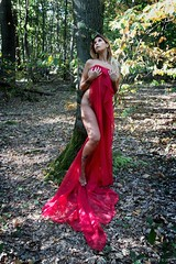 Elsa (henrychristo27 (Christophe)) Tags: portraiture sensuality nudeart sensual nude transparence voile glamour foret nature beauty rouge