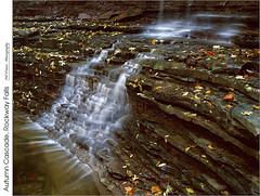 Autumn Cascade, Rockway Falls (jwvraets) Tags: rockway cascade stcatharines niagaraescarpment autumn fall rockshelf water leaves film fujivelvia50 fujirvp colourtransparency scanned opensource rawtherapee gimp pentax7x7 smcpentax6x71455mm