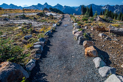 The path ahead (jeff's pixels) Tags: nikkor nikon d850 landscape pnw washington autumn nature hiking trail mountrainiernationalpark mountrainier rainier path bird bus train