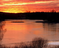 The beautiful winter sunset evening. (irio.jyske) Tags: landscapephotograph landscape lanscape landscapes landscapephotographer landscapephotos lake lakescape landscapepics landscapepic naturephotograph naturepictures naturephoto naturepic nature naturescape naturephotos naturephotographer naturepics natural winter ice frost trees forest island colors sunset sunsetcolors beauty beautiful photographer photograph photos pic nice
