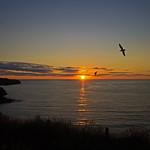 sunset - Port Isaac, Cornwall, England - July 2018 thumbnail
