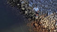 Chattanooga Tennessee (mark owens2009) Tags: tennessee chattanoogatennessee chattanooga tennesseeriverpark sportsdrink flyfishing tennesseeriver nikonp900 nikon rocks riverbank