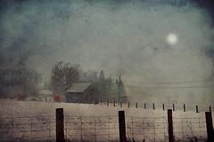 """Neige à la ferme ... ( P-A) Tags: ferme neige blanc hiver froid immaculée campagne cultivateur éleveurs terres moisson foin clôture beauté photos simpa© """"nikonflickraward"""" """"atravésdetumirada"""" jesuisvenuevousdire"""