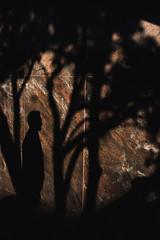 (Streets and Shadow) Tags: wellington wellingtonnz wgtn fujifilmxseries fujifilm fujifilmnz fujifilmstreet xseries xt2 street streetphotography streetphotographer streets