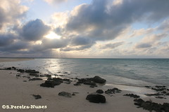 Flamenco Beach, Cayo Coco, Cuba (Sebastiao P Nunes) Tags: flamenco playa praia atardecer pordesol sunset twilight oceano mar canoneos70d nunes snunes spnunes spereiranunes