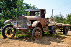 Washington Jalopy_188128 (rjmonner) Tags: agriculture agricultural agronomy agronomic antique aged abandoned antiquity automotive country car dilapidated dormant decayed deserted exposed farm farming field farmland history happytruckthursday isolated inert junker jalopy junk nikon neglected old outdoors quiet quaint unique tranquil usa unpainted vintage vehicle washington wagon washingtonstate oxidized texture textured yesteryear bygonedays
