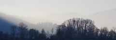 Burg und Burgkirche Marquartstein (g e g e n l i c h t) Tags: nebel morgen marquartstein achental chiemgau bayern