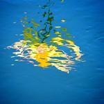 Abstract Lotus Water Reflection thumbnail