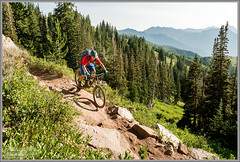 Clayton Does the Crest (Photo-John) Tags: wasatchcrest wasatchmountains mtb bike cycling sports action enduro singletrack alpine utah parkcity slc saltlakecity outdoors adventure travel claytoncoleman biking mountainbiking mountainbiker mountainbike stockphotography stockphoto editorialphotography actionsports sonyalpha sonya6500 bici velo