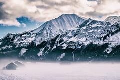 Foggy Mountain View
