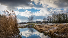 Rogalin Landscape Park (Magda Banach) Tags: canon canoneos5dmarkiv rogalin rogalinlandscapepark blue clouds colors dramatic flora nature outdoor outside plants poland reflection sky snow treeline trees view winter landscape