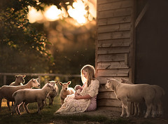 Love is not an emotion. Love is an occasion. Celebrate it each day (But Natural Photography) Tags: natural light lightroom photoshop newborn baby babygirl newbornphotography lifestyle outdoor farm nature sunset goldenhour love motherhood sheep wilderness british countryside nikon nikond800