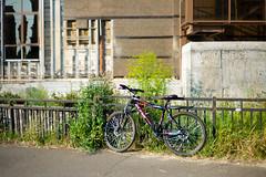 L1043379 (Choo_Choo_train) Tags: leicame leicam bicycle dof bokeh summer kazan russia казань