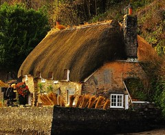 Time for a new roof (Nick White2009) Tags: dittisham devon cottage roof thatch straw window sun building england uk britain craft skill flowers