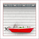 Red Dinghy thumbnail