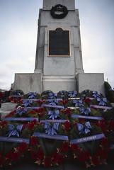 Wreaths (tyson_laidler) Tags: ektachrome e100 35mm kodak remembrance day 2018 slide film canon eos3