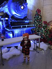 "2016-12-17-the-polar-express-5_30476974788_o • <a style=""font-size:0.8em;"" href=""http://www.flickr.com/photos/109120354@N07/44401364220/"" target=""_blank"">View on Flickr</a>"