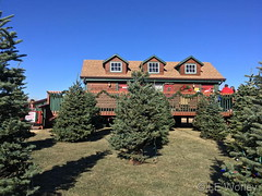 December 8, 2018 - WinterFest decorations on a clear day. (LE Worley)
